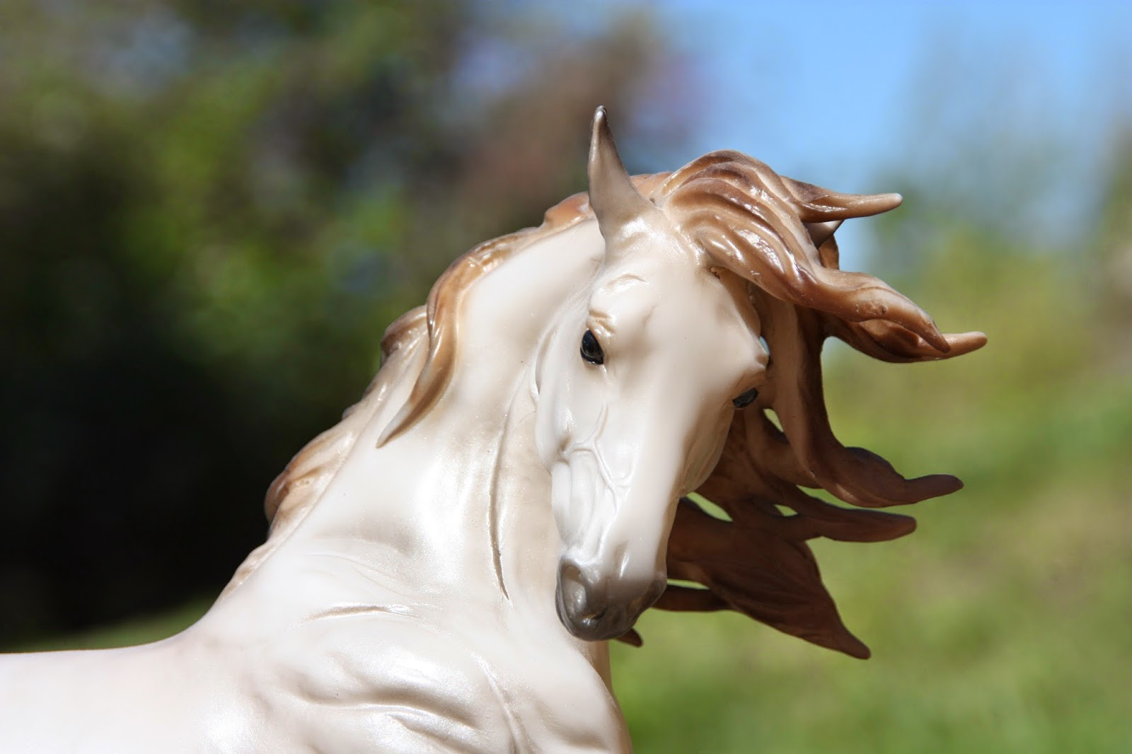Bits and Spurs: Story of the Horse: Loki
