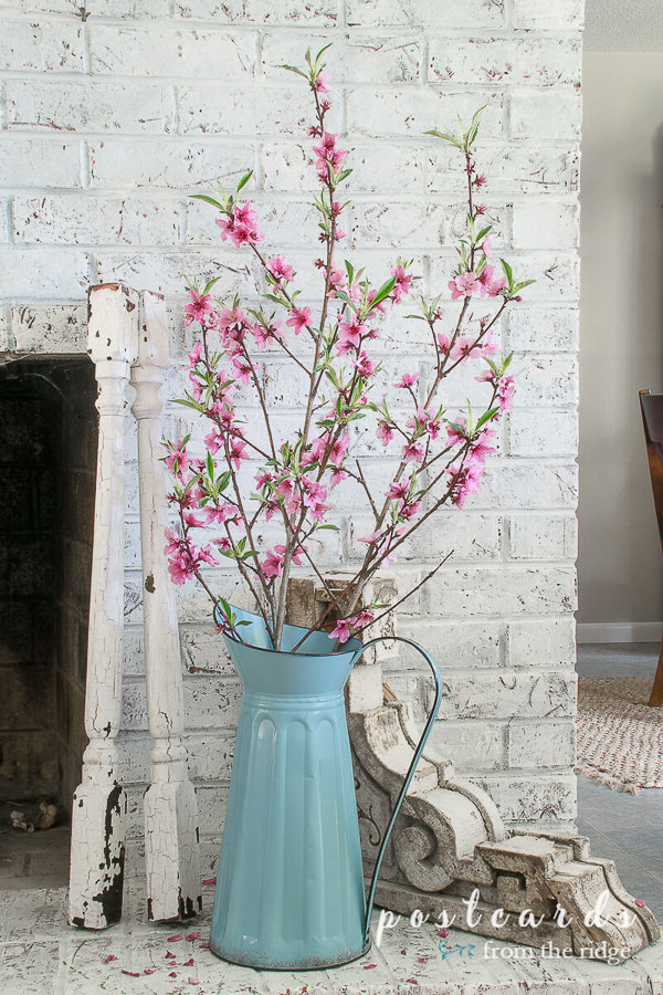 peach blossoms in a blue metal enamel pitcher