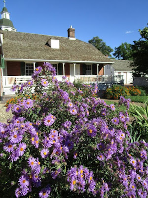 A big splash of purple flowers in the front with the rear porch of a brick house and a bright blue sky behind them.