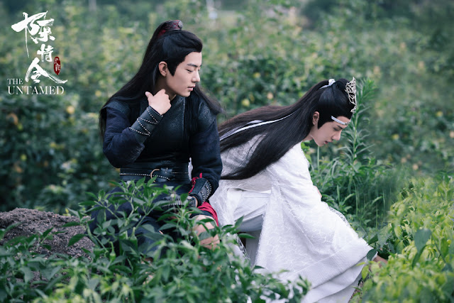 wang yibo xiao zhan the untamed