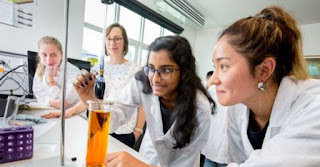 The University of Melbourne leads this year's STEM superstars