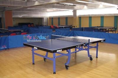 Contoh Gambar Lapangan Tenis Meja Atau PingPong