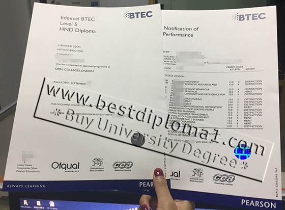 Fake BTEC certificate and transcript