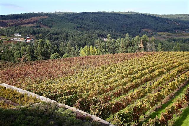 Quinta da lixa, vinho verde, portugal