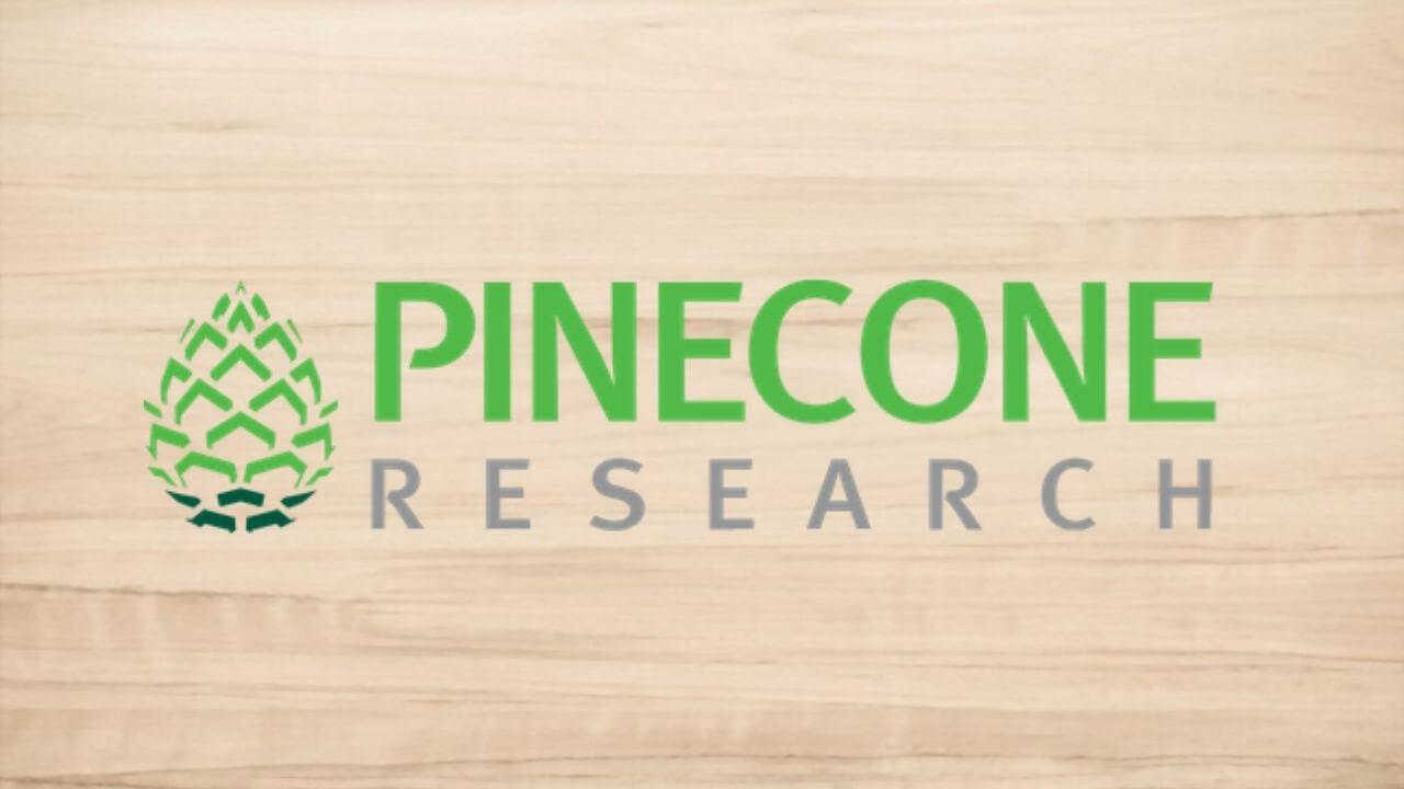 pinecone-research-sitio-de-encuestas-pagadas-en-linea