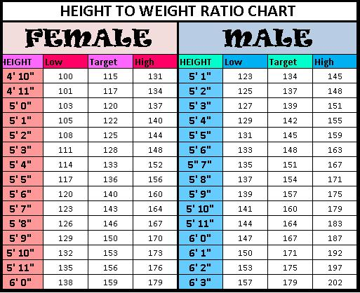 is bmi or body fat percentage more accurate