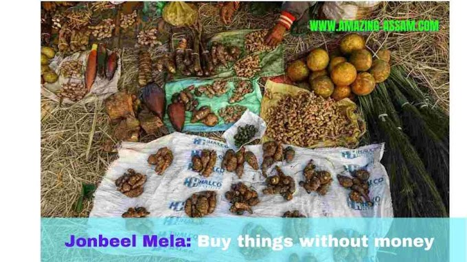 Jonbeel Mela Assam - Barter System of India 2021