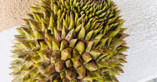 Disease occurrence in durian fruits