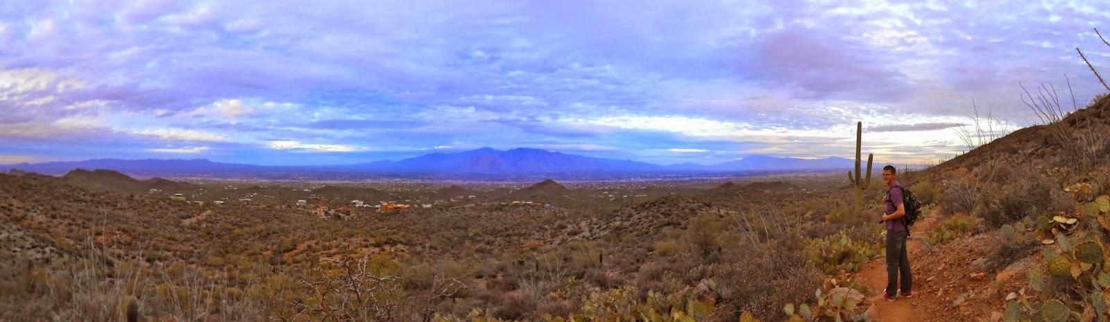sunset in saguaro national park tucson arizona