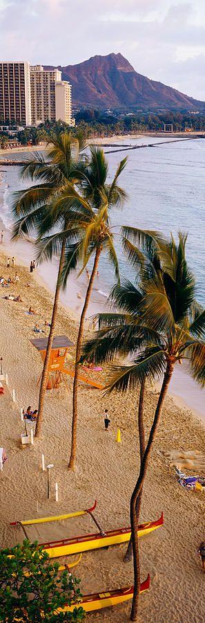 Waikiki, Hawaii, USA