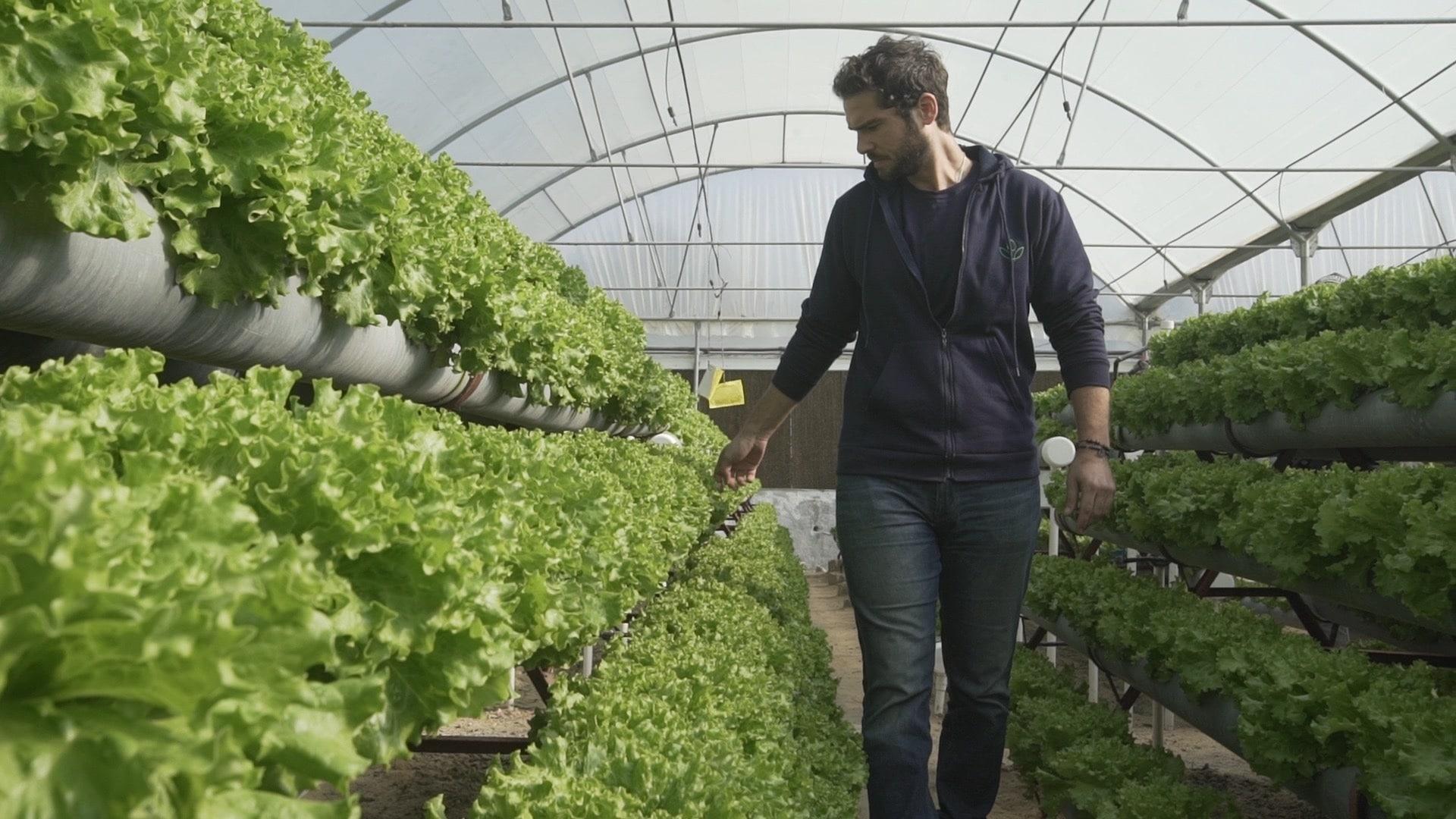 agribusiness work-life balance