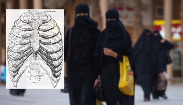 Fakta atau Mitos : Perempuan Berasal Dari Tulang Rusuk