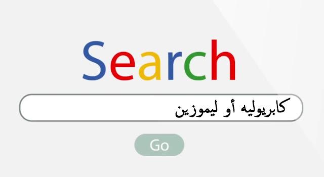 البحث الدقيق في جوجل