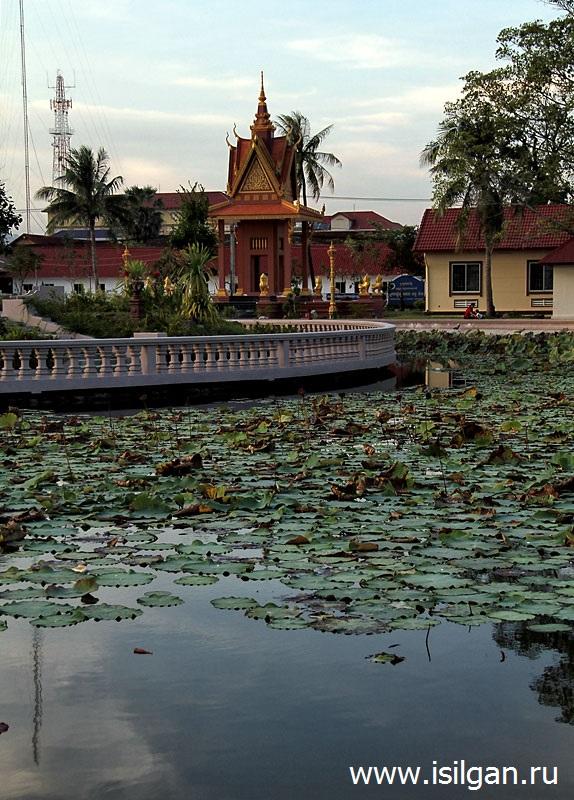 Пруд лотосов. Город Кампот. Камбоджа