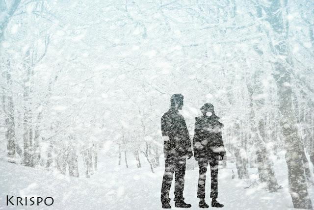 silueta con copos de nieve