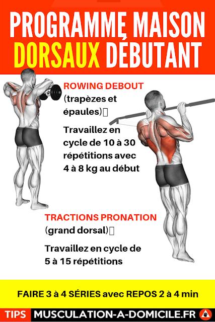 musculation à domicile programme musculation débutant poids du corps et haltère dorsaux trapèzes biceps