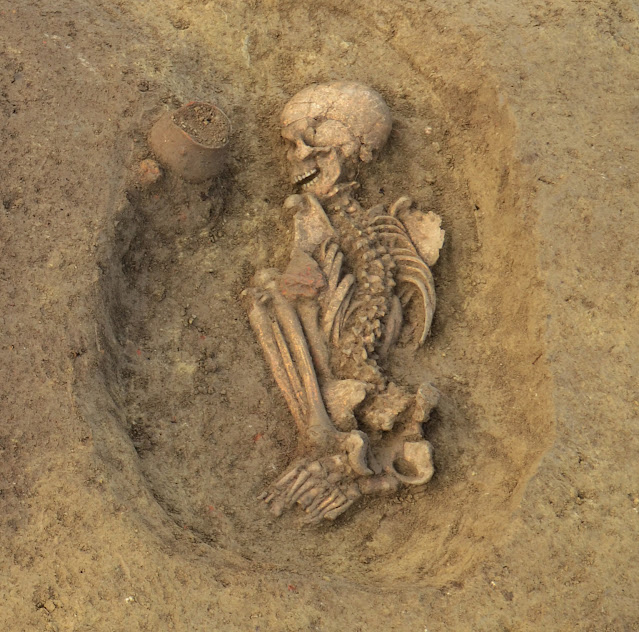Genetic histories and social organisation in Neolithic and Bronze Age Croatia