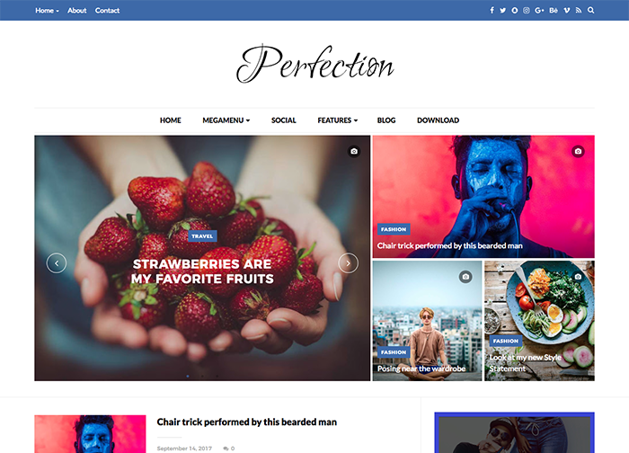 Perfection Premium Blogger Template