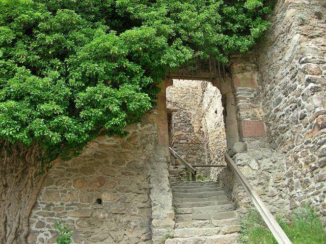rośliny, wejście, kamień, zamek, Chojnik