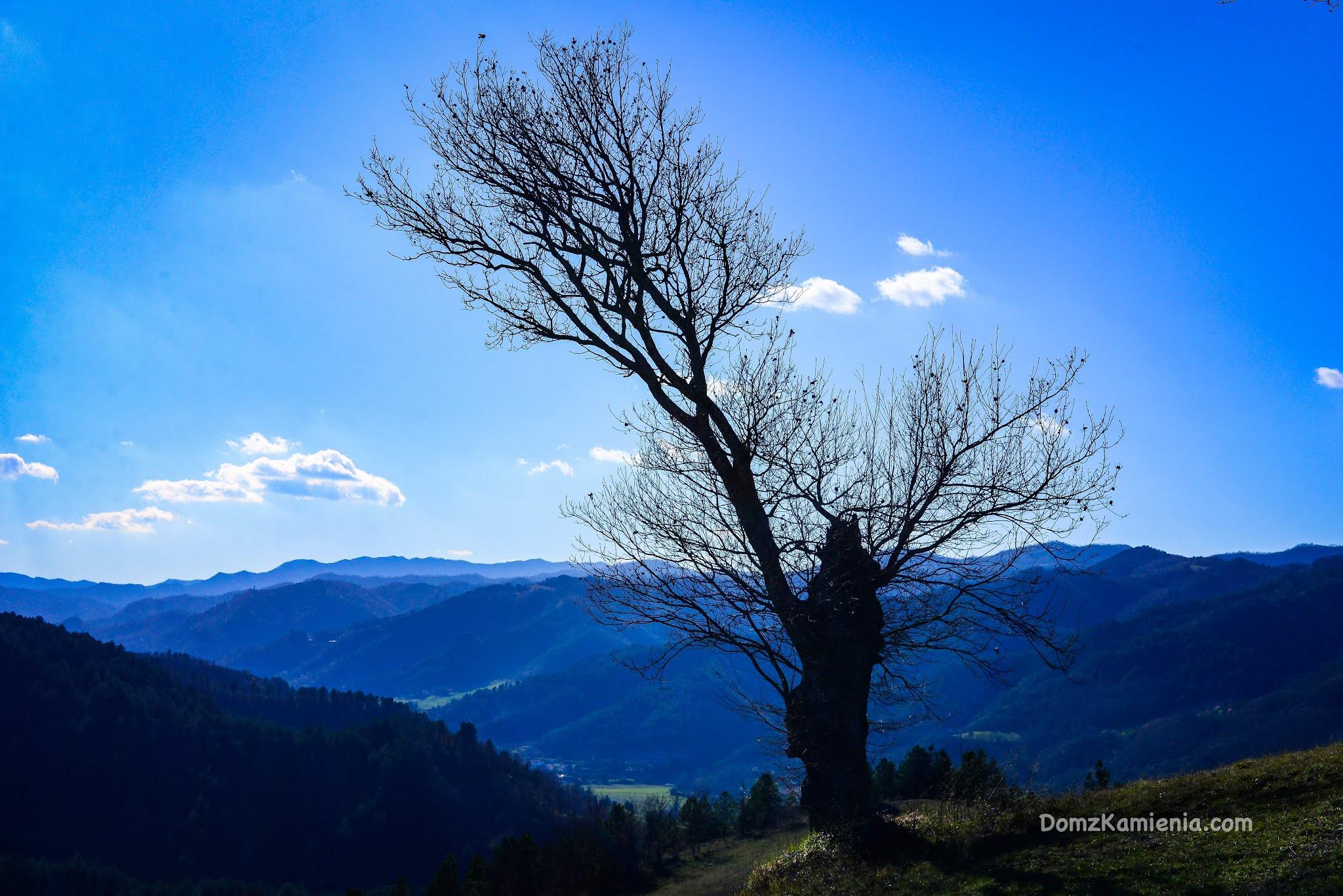 Marradi, blog Dom z Kamienia, życie w Toskanii