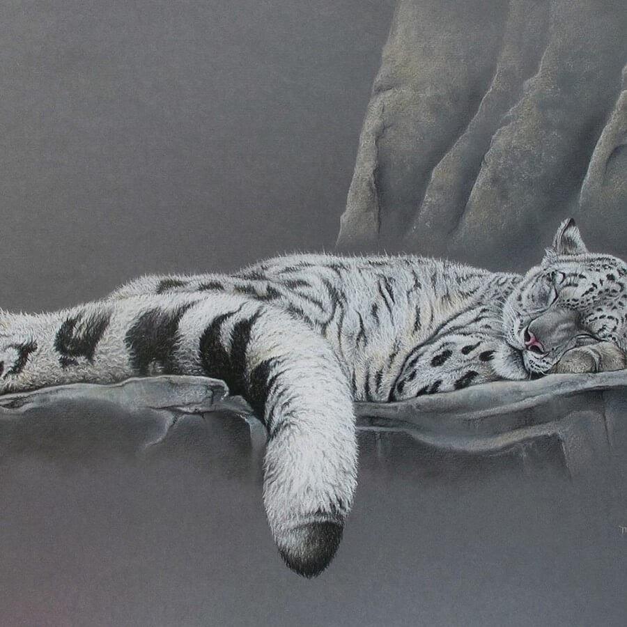 08-Snow-Leopard-Martin-Aveling-Animal-Portraits-www-designstack-co