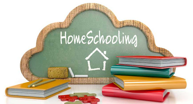 Sikkim to soon start home-schooling for elementary education