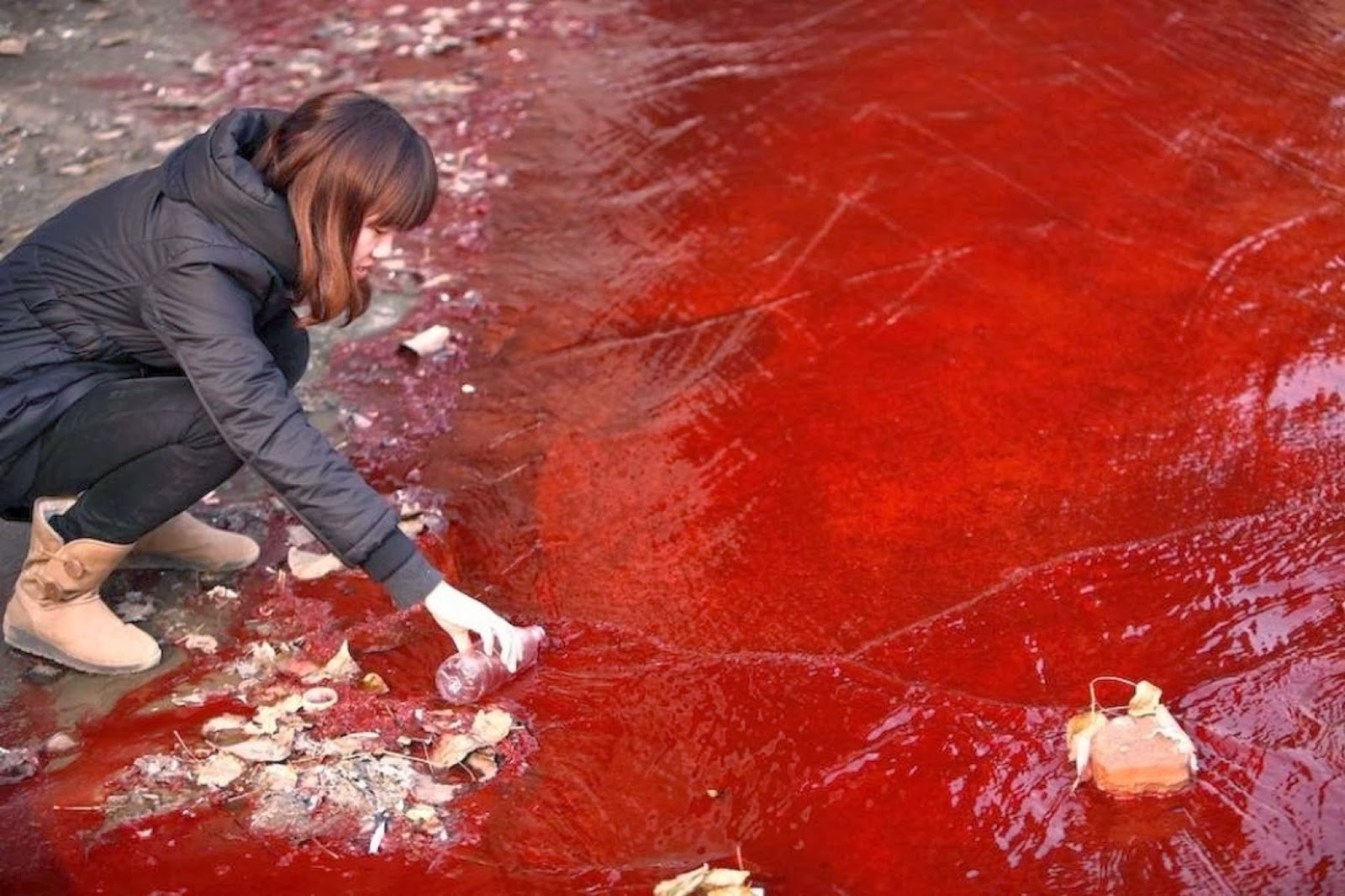 A College Professor Says That The Contains Much Is Myth An Example Given When Nile River Was Turned Into Blood