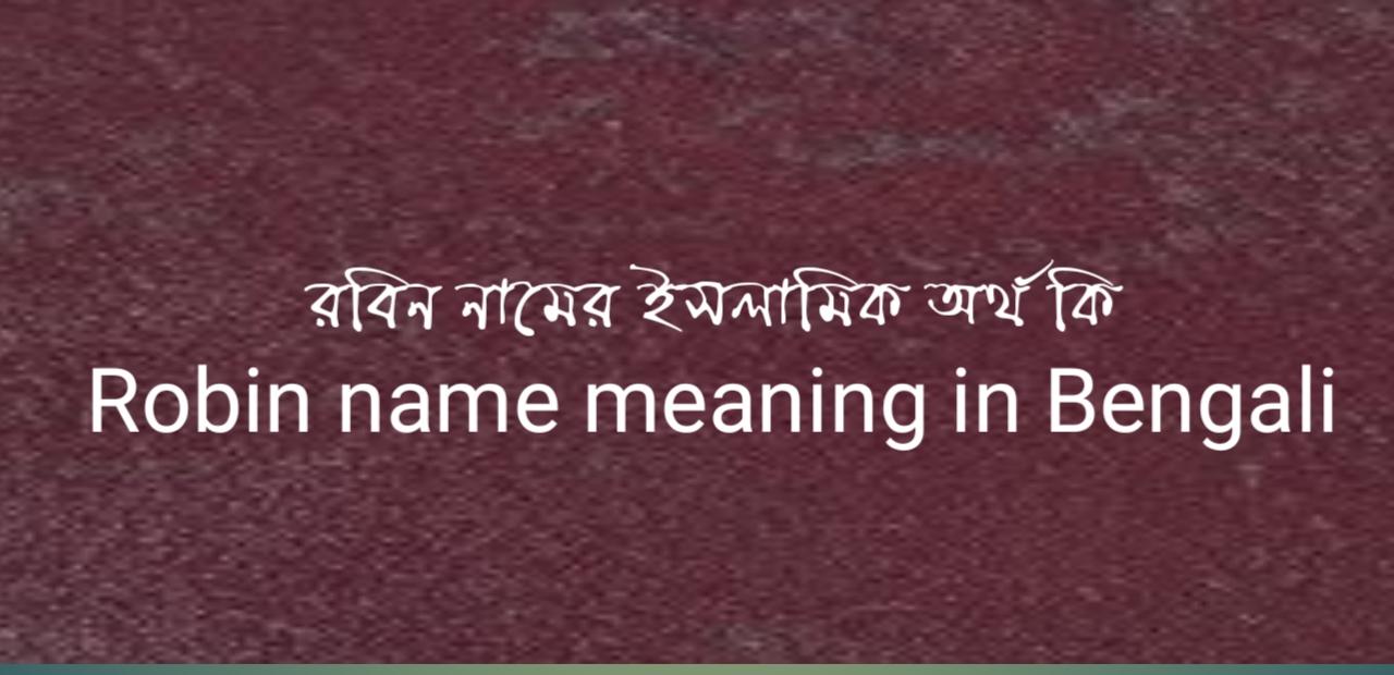 রবিন নামের অর্থ কি | রবিন নামের ইসলামিক অর্থ কি | Robin name meaning in Bengali