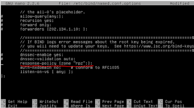 Cara Setting Bind9 RPZ Response Policy Zone Untuk DNS Filter 2