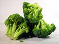 Khasiat Brokoli Untuk Penderita Kanker Payudara