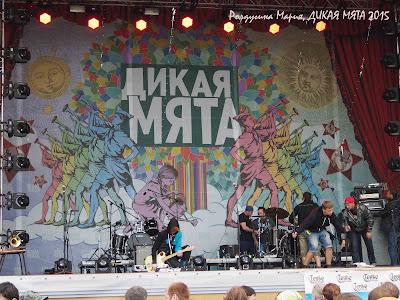 Дикая Мята 2015