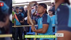 Mantan peserta Asia Got Talent tewas dipatuk ular