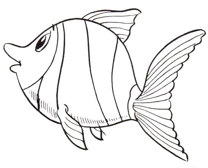Baú Da Web: 10 Desenhos E Riscos De Peixes Para Pintura