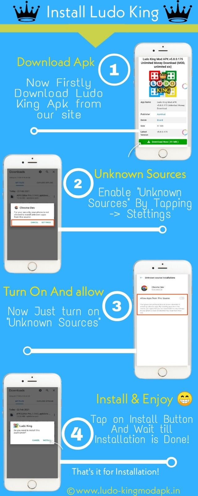 Infograpfic image About Ludo King Installation Process
