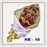 HB 10