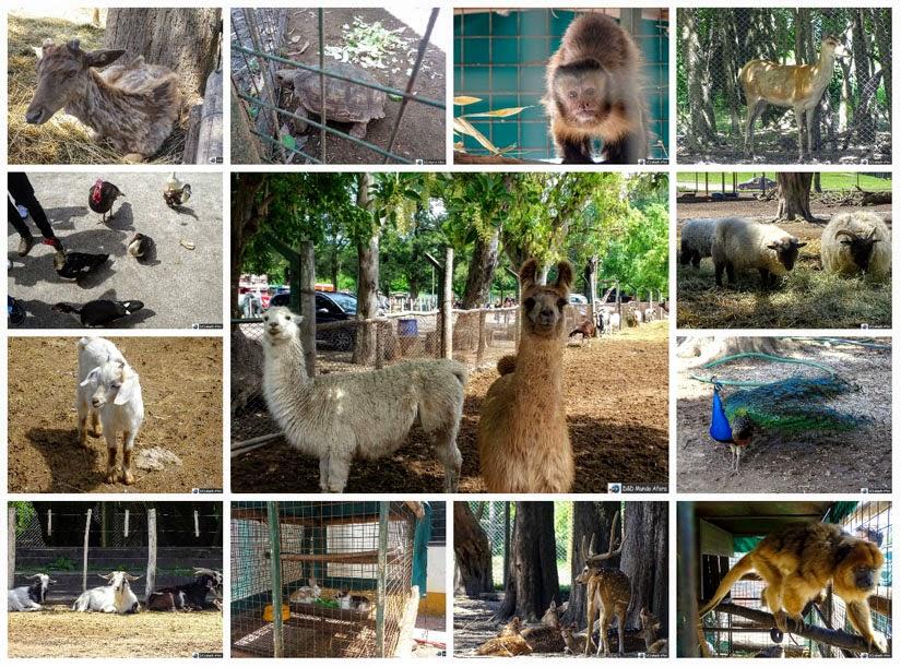 Zoo Luján (Buenos Aires)