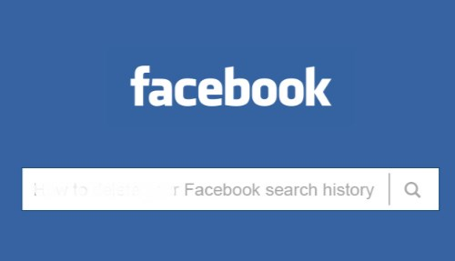 facebook search history public
