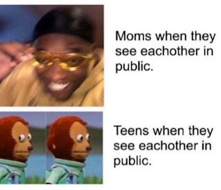 Moms vs Teens Meme