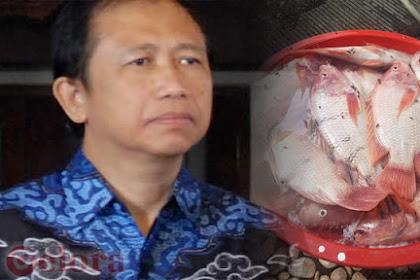 Marzuki Alie Sedekahkan Puluhan Ikan Kesayangannya Mati akibat Pemadaman Listrik Massal