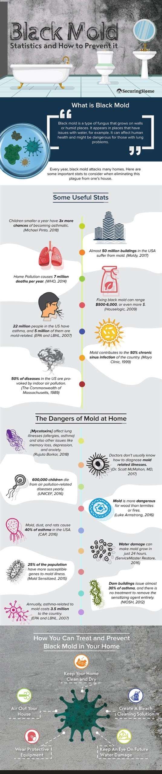 How to Get Rid of Black Mold #infographic