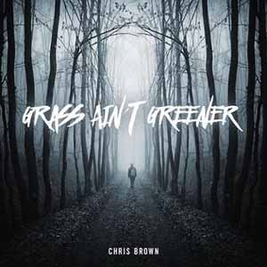 Download MP3 CHRIS BROWN - Grass Ain't Greener
