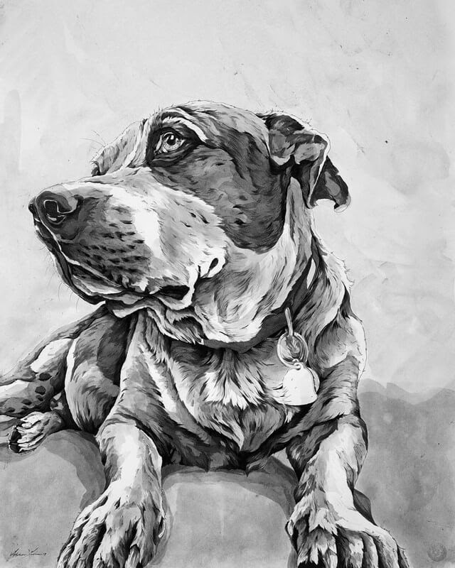 02-Doug-A-Landerman-Animal-Drawings-Paintings-in-Graphite-and-Ink