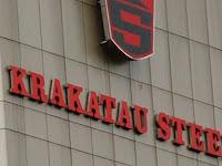 PT Krakatau Steel (Persero) Tbk - Recruitment For D3, S1 Pro Hire Program Krakatau Steel July 2019