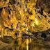 Khám phá hang động Mo So bí ẩn tại Kiên Giang