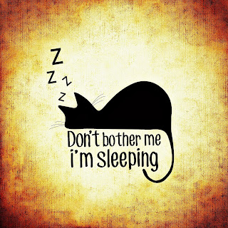 "drawing of cat sleepin on weathered looking canvas background with ""don't bother me I'm sleeping"" in lettering around the black cat"