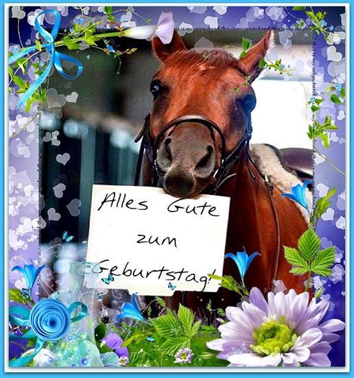 Pferd Alles Gute Zum Geburtstag