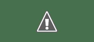 Logo de Aldeas Infantiles