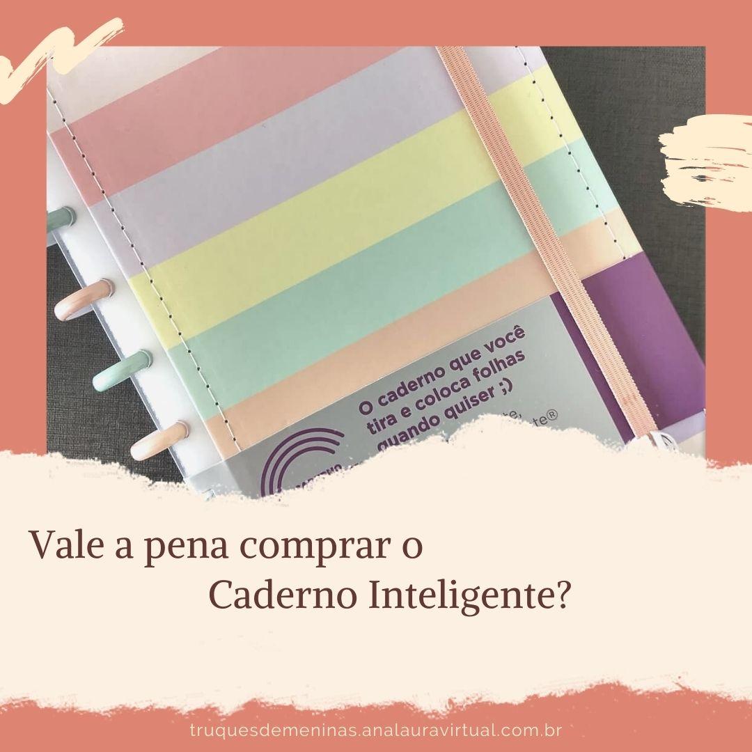 resenha sobre o caderno inteligente as verdades que ninguem te contou