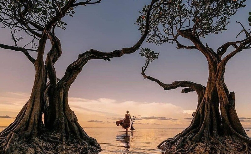 Pantai Walaikiri, Keindahan Pantai Dengan Dihiasi Mangrove Yang Menari Di Sumba Timur