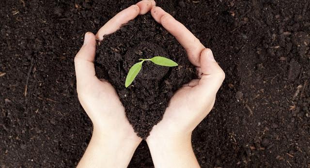 Cuida el medio ambiente-PuroIngenio